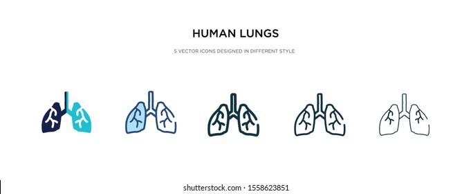 human lungs icon in different style vector illustration. two colored and black human lungs vector icons designed in filled, outline, line and stroke style can be used for web, mobile, ui