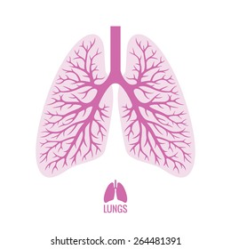 Human lungs illustration in pink color with bronchial tree plus small lungs icon isolated on white background