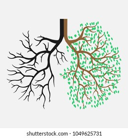 Human lungs. Respiratory system. The appearance of healthy and light lungs.Vector illustration eps 10