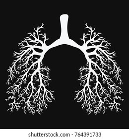 Human lungs. Respiratory system. Healthy lungs. Light in the form of a tree. Black and white drawing on a chalkboard. Medicine.