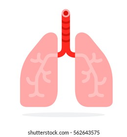 Human lungs vector flat material design object. Isolated illustration on white background.