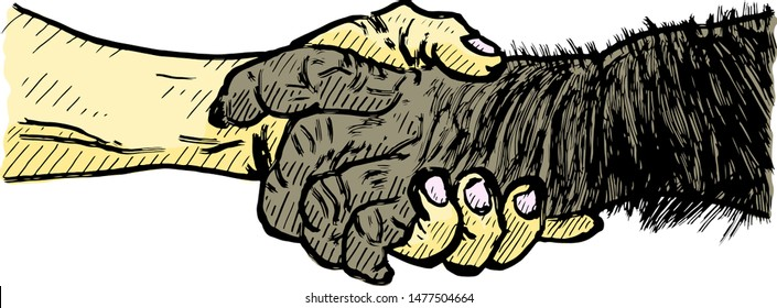 A human and monkey handshake for the concept: Human working hand in hand with wildlife to conserve the world. Vector illustration.