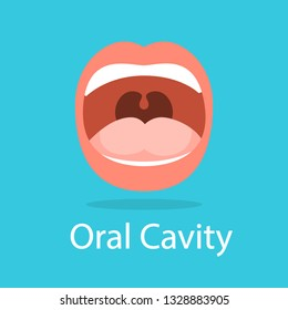 Human oral cavity. Opened mouth. Idea of dental and oral care. Lips, tongue and teeth. Isolated flat vector illustration