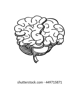 Human organ concept represented by brain icon. Isolated and sketch illustration.