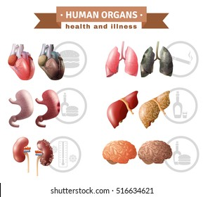 Human organs health risk factors icons composition medical poster with hart liver brain and lungs educative vector illustration