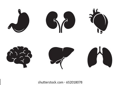 Human organs icon collection - stomach, kidney, heart, brain, liver, lungs. Vector art.