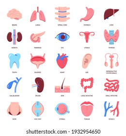 Human organs icon set in flat style. Medical anatomy symbols collection. Vector illustration.