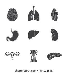 Human organs icon set. Vector illustration.