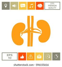 Human organs. Kidney silhouette icon