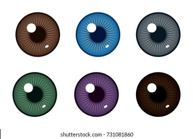 Human pupil of eyeball. Color of eyes. Realistic vector illustration