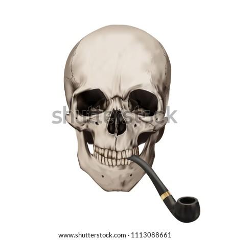 Human Realistic Skull Smoking Tobacco Pipe Stock Vector Royalty