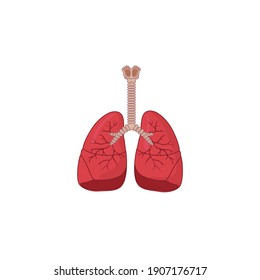 Human Respiratory System Icon Vector Illustration isolated on white background. Breathe, bronchi, bronchiole, bronchus, lung, lungs icon for medical or health care concept