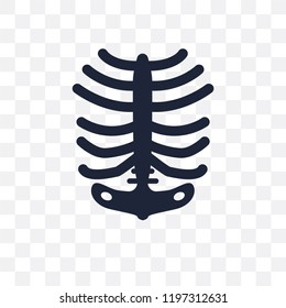 Human Ribs transparent icon. Human Ribs symbol design from Human Body Parts collection.