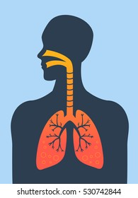 Human silhouette with inflamed respiratory system (lungs) showing diseases like asthma and bronchitis vector illustration.