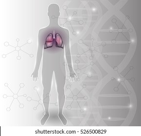 Human silhouette and lungs, respiratory organs detailed anatomy on an abstract scientific background