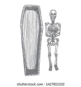 Human skeleton and coffin hand drawing. Dead skeleton. Halloween open casket.  Witchcraft magic, occult voodoo. Vector.