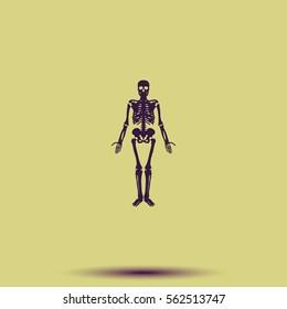 Human skeleton icon.