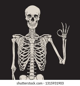 Human skeleton posing isolated over black background vector illustration. Hand drawn gothic style placard, poster or print design