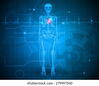 Human skeleton with red heart blue background and normal cardiogram, scientific design