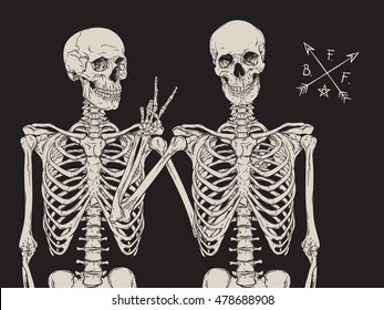 Human skeletons best friends posing isolated over black background vector illustration