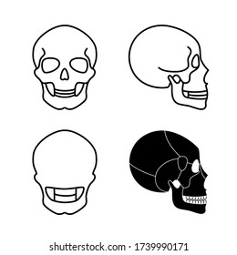 Human skull anatomy. Flat vector medical illustration isolated. Structure of facial skeleton with main parts. Cranium diagram with part bones. Educational, science poster. Front, back and side view. .