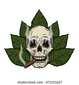 Human skull with a cigar. Cartoon skull