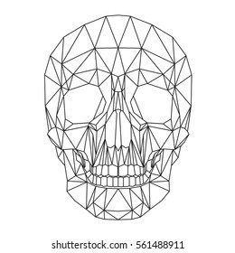 Human skull, cranium, abstract polygonal lines design on white background