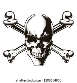 Human skull with cross bones. Vector illustration. Print vector design. Premium quality skull concept. Jolly roger