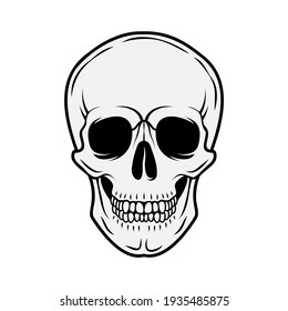 Human skull. Front view. Vector black and white hand drawn illustration isolated on white background