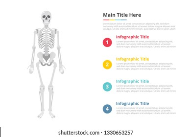 human skull infographics template with free space of text with various color and description - vector