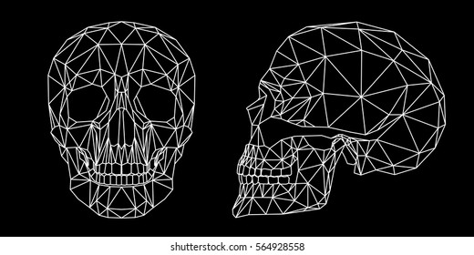 Human skull on black background, front and side view, geometric polygons and triangles cranium line art