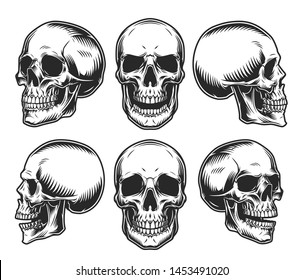 Human skulls collection in different positions in vintage monochrome style isolated vector illustration
