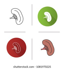 Human spleen icon. Lymphatic system organ. Flat design, linear and color styles. Isolated vector illustrations