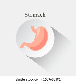 Human stomach icon design. Internal organs vector