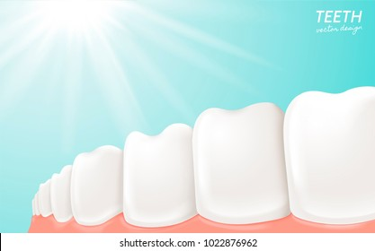 Human Teeth and gum anatomy, clean and white teeth for medical uses in 3d illustration isolated on blue background