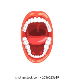 Human teeth, open mouth vector Illustration on a white background