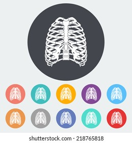 Human thorax. Single flat icon on the circle. Vector illustration.