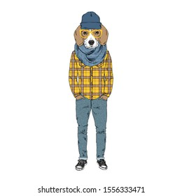 Humanized Beagle breed dog dressed up in hipster city outfits. Design for dogs lovers. Fashion anthropomorphic doggy illustration. Animal wear plaid shirt, jeans, glasses, beanie hat, scarf. Hand