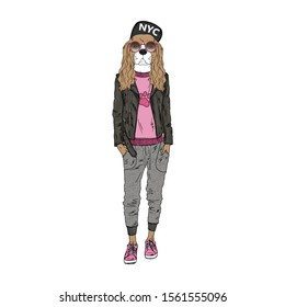 Humanized Cavalier King Charles Spaniel breed dog dressed up in modern urban outfits. Design for dogs lovers. Fashion anthropomorphic doggy illustration. Hand drawn vector.