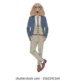 Humanized Irish Setter breed dog dressed up in retro outfits. Design for dogs lovers. Fashion anthropomorphic doggy illustration. Animal wear suit, tie, glasses. Hand drawn vector.