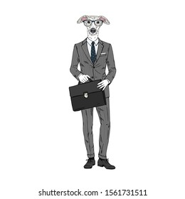 Humanized Italian Greyhound breed dog dressed up in office outfits. Design for dogs lovers. Fashion anthropomorphic doggy illustration. Animal wear suit, tie, glasses, bag. Hand drawn vector.