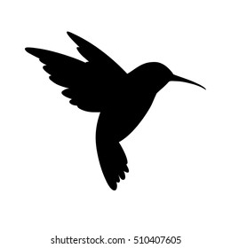 humming bird silhouette. Isolated vector