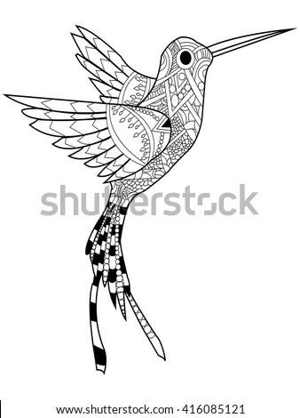 Hummingbird Coloring Book Adults Vector Illustration Stock Vector ...