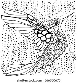 Hummingbird Coloring Page Black And White Drawing Outlines In Pen Ink Hand Drawn Tiny