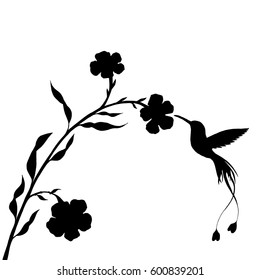 hummingbird and flower silhouettes, hand drawn flying bird, isolated vector element
