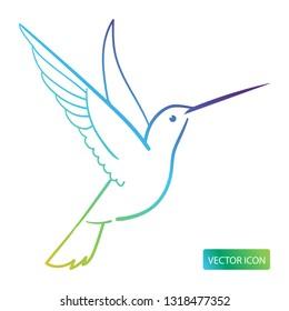 Hummingbird Icon Or Logo Design Vector Image On White Background.  Isolated Colibri Symbol Vector Illustration.