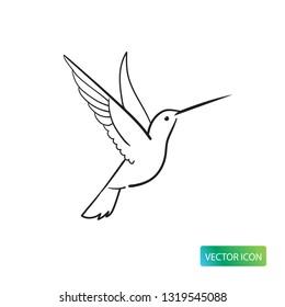 Hummingbird Line Icon Or Logo Design Vector Image On White Background. Isolated Colibri Symbol Vector Sketch Illustration.