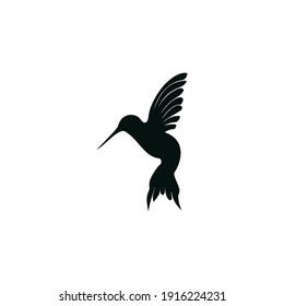 Hummingbird logo design inspiration isolated on white background