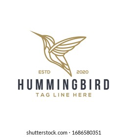 hummingbird logo design vector template