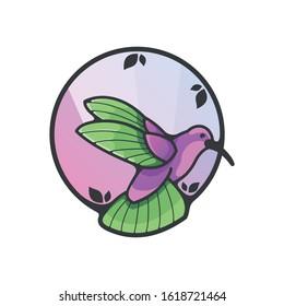 hummingbird vector colibri design a bird animal icon mascot